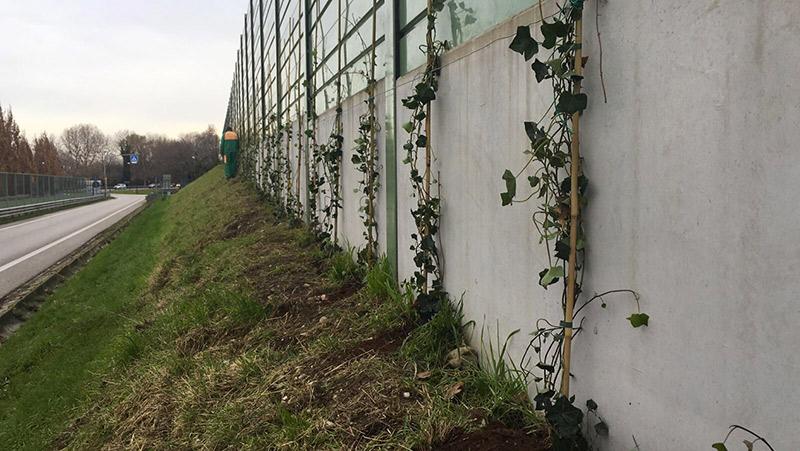 green_wall-1